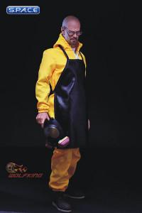 1/6 Scale Walt - the Chemical Poisoning Teacher
